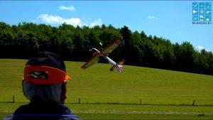 Eversberg 3D 곡예 비행의 젊은 야생 동물